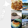 都道府県別ミュージックファイル*岡山県の歌