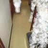 床の表面フワフワ感の修理1/3床下事前調査