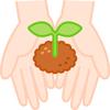 マンションでもおしゃれなプランターで家庭菜園ができる!!
