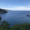 夏の北海道旅行2日目◎黄金岬でシュノーケリングが最高すぎた!藻岩山の夜景は必ず見てほしい!小樽・すすきのを巡る。