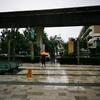 雨季のバンコク。傘をさして歩こう。