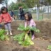 2月27日 辰巳の森緑道公園