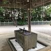 函館八幡宮の花手水