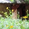 泥温泉に入ってみたよ!マッドスパ「I RESORT」訪問記 / ベトナム・ニャチャン旅行記10