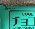 ついにガリガリ君まで!チョコミント味が流行ってる?本当なのかな?