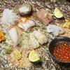 【オススメ5店】赤坂・六本木・麻布十番・西麻布(東京)にある小料理が人気のお店