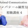 アニマルコミュニケーションに必要なテレパシーの練習方法