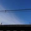 通勤電車の虚空とThe HIATUS