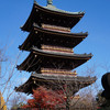 東叡山寛永寺 本堂である根本中堂はどこだ? 上野は江戸代の巨大テーマパーク?