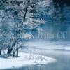 冬の高原の美、樹氷と霧氷