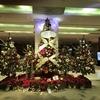 大阪のメリークリスマス