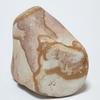 「猫 異種4匹同居」現代アート 石 Contemporary Art 偶偶石vol.12.3