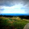 """ドイツ・ハルツ山地にある""""ハルツの魔女の道""""をハイキングしてみたい"""