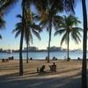 マイアミ旅行なら海上ドライブの7マイルブリッジとキーウエストをおすすめしたい
