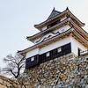 【ツベルクリンwalker】石垣崩壊しちゃったけど大丈夫!丸亀城を徹底ガイド!【香川県】