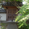 ゴールデンウィークは奈良旅行