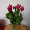 チューリップの花がだらーんと下を向くのを防ぐ簡単な方法。オマケに花も長持ち!