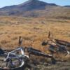 幸福の野原でマウンテンバイク
