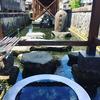 福井県大野市の水道水事情