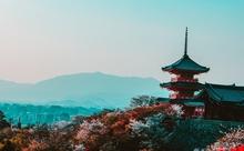 「日本語教育の現状」をマスターして検定試験に最短で合格する