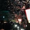 桜の通り抜け🌸