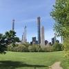 New York City 7days : ニューヨーク 旅行 6日目 セントラルパーク/ 五番街/ マディソンスクエア/ ブロードウェイミュージカル