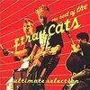 【本日の一曲4】Stray Cats「Rock This Town」【ロックディスタウン】