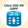 IOS-XRにおけるOSPF Loopback I/Fをオリジナルマスクで広報する設定方法