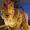 【中国語会話 in 福井~その14~】 あの恐竜はすごい迫力ですね