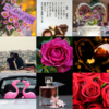 アメブロ、Instagram、Facebookに「琴華」さんの詩をご紹介しました。
