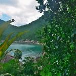 マンゴーベイ(Mango Bay )~タオ島の北、最秘境のビーチリゾートここは船で来るべき処!!
