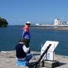 〔05〕徘徊老人~沼津の海岸散歩する