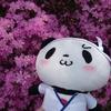 お買いものパンダ 王子の雑記ブログ パート13