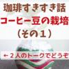 【コーヒーすきすき話】コーヒー豆の栽培(その1)
