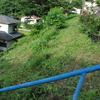 2013/07/02 刈払機で斜面の草刈りをした