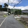 武田山登りました(その4)登り初めに戻ります。とても整備され気持ちがいいです。