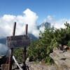 南アルプス 鳳凰三山から早川尾根の縦走(その4)高嶺~白鳳峠
