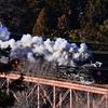 秩父鉄道 SLパレオエクスプレスの撮影(上り便)