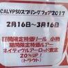 スプリングフェア開催のお知らせ!!
