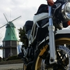 風車が目印「霞ヶ浦総合公園」は淡水魚も見れて楽しいスポット
