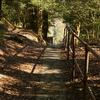 九州一人旅~鹿児島-秘境っぽい絶景滝「千里ヶ滝」までロマンあふれる道だった