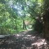 ランニングログ 8/11 久しぶりの水呑地蔵ラン!!生駒山の中腹までのトレイルで、大腿四頭筋ガクガク‼︎