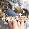 【作業環境向上化計画】SSD用ケース+USBハブ開封レビュー