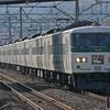 11月17日撮影 東海道線 平塚~大磯間 貨物列車3本と185系【特急踊り子号】3本を撮影する