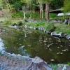 横山不動尊 こころの池(宮城県登米)