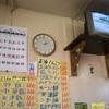 """ここの""""味噌串カツ""""は""""衣料理""""といっても過言ではない『名古屋競馬場』"""