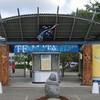 パーマストンノースで、マオリの一大文化祭典、テ・マタティニが開かれる
