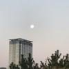 朝の月とジョギングと排気ガス