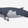 今夜のオンライン英会話の予習 日本の捕鯨再開について