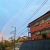 久しぶりの虹!